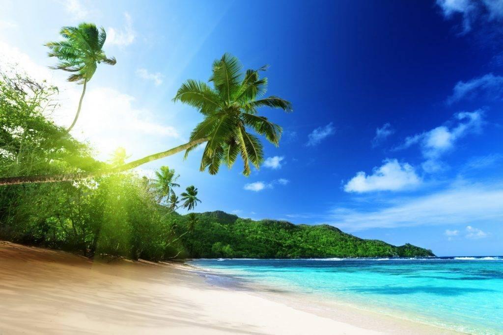 Отдых зимой в Доминикане