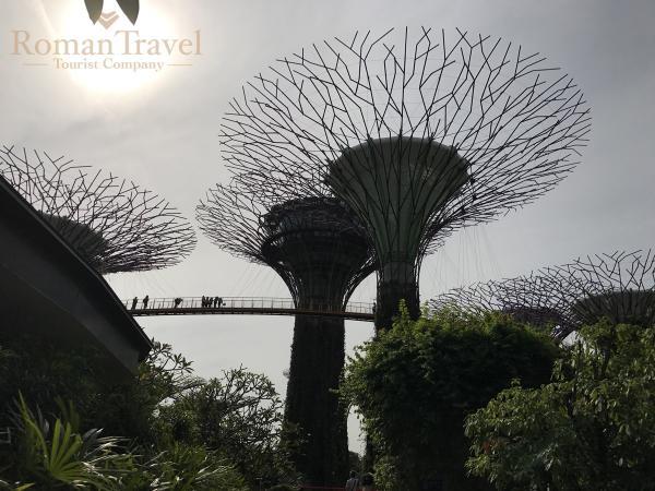 Туры в Сингапур. Ботанический сад в Сингапуре
