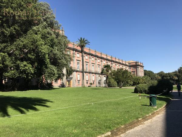 Палаццо Каподимонте