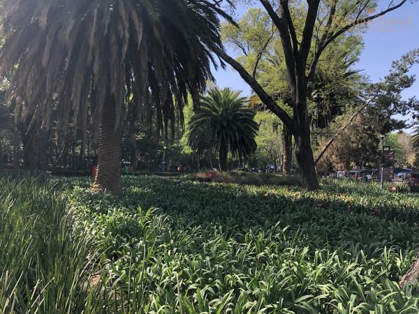 Парк Чапультепек. Мехико