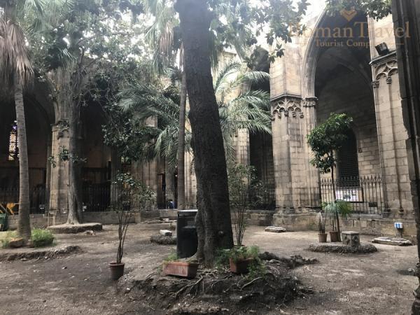 Собор Барселона внутренний дворик