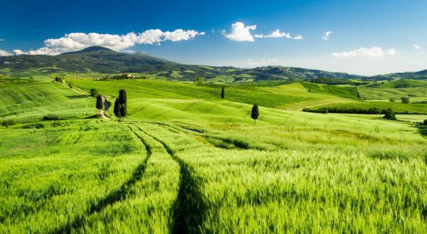 Краски Тосканы