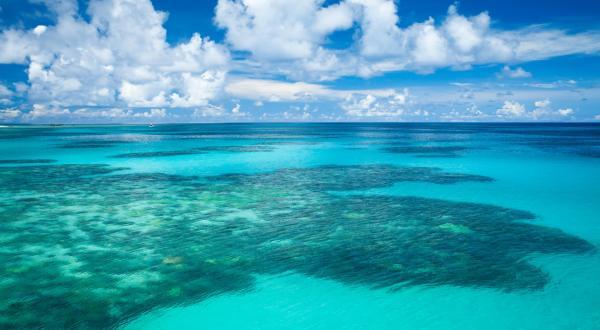 Австралия. Большой Барьерный Риф.