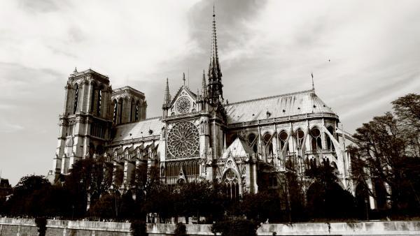 Франция. Париж. Нотр-Дам