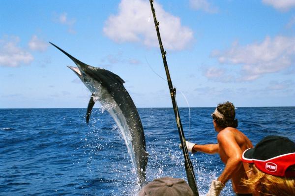 Рыбалка на Маврикии