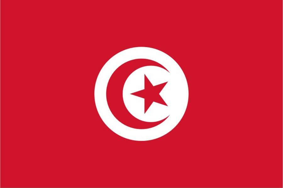 туры в Тунис